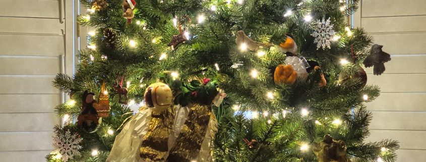 Kaunis jõulupuu